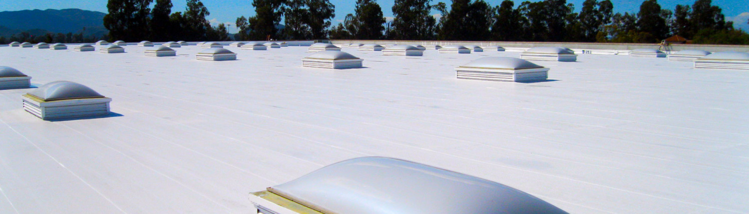 Single ply membrane roof